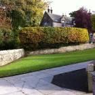 Private hedge cutting service
